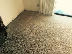 Mega Dry Carpet Cleaning San Diego 7