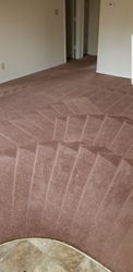 Extremely Clean Carpets & Services  3