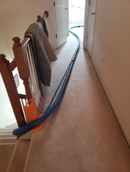 DMV Carpet Cleaning LLC Woodbridge 9
