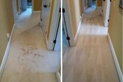 J & M All Purpose Carpet Tile & Upholstery Cleaning LLC CAPE CORAL 0