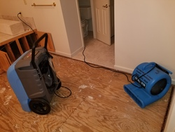 Extremely Clean Carpets & Services  6