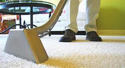 SHOWCASE CARPET CLEANING Escondido 1