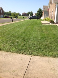 Gilmo Lawn Care Clarksville 8