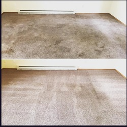 Xtreme Carpet & Tile Cleaning 217 Cedar Street #166, Sandpoint 2