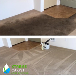 Xtreme Carpet & Tile Cleaning 4951 Bldg Ctr Dr., CDA 5