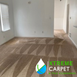 Xtreme Carpet & Tile Cleaning 4951 Bldg Ctr Dr., CDA 6