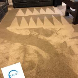 Littleton's Floor & Carpet Cleaning Waldorf 9