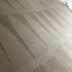 Littleton's Floor & Carpet Cleaning Waldorf 11