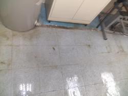 Floor+Medics San Diego 35