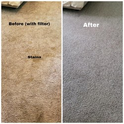 Cherrys Carpet Cleaning Inc Springfield 4