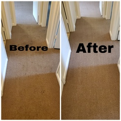 Cherrys Carpet Cleaning Inc Springfield 17