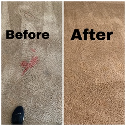 Cherrys Carpet Cleaning Inc Springfield 14