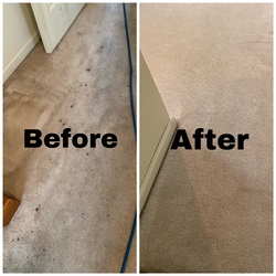Cherrys Carpet Cleaning Inc Springfield 15