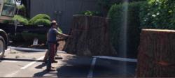 Duran Tree Service LLC Hillsboro 6