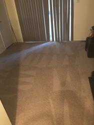 Littleton's Floor & Carpet Cleaning Waldorf 20
