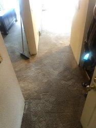 EcoGreen Carpet Care San Francisco 3