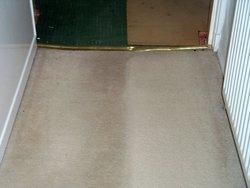 EcoGreen Carpet Care San Francisco 6