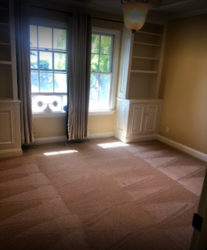 EKO Carpet Cleaning Belmont  0