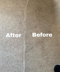 Cherrys Carpet Cleaning Inc Springfield 22
