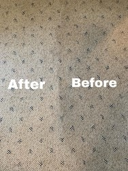 Cherrys Carpet Cleaning Inc Springfield 23