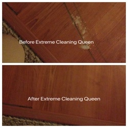 Extreme Cleaning Queen Schenectady 21