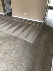 Snyder's Carpet & Tile Cleaning Huntersville 1