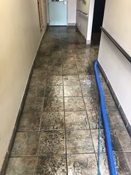 Snyder's Carpet & Tile Cleaning Huntersville 37