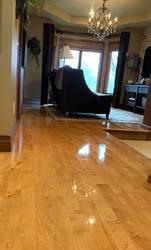 Daniella's Cleaning Fairgrove  45