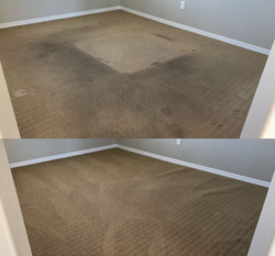 Champion Carpet Cleaning Las Vegas 8