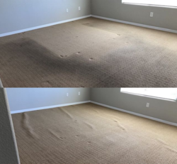 Champion Carpet Cleaning Las Vegas 10