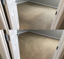 Champion Carpet Cleaning Las Vegas 11