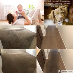 Champion Carpet Cleaning Las Vegas 23