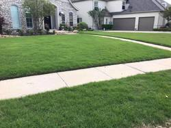Five Star Fertilizing & Weed Control Rockwall 4