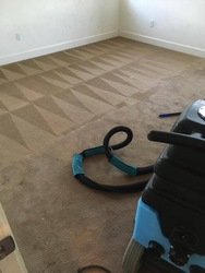 Central Valley Carpet Cleaning Services LLC Patterson 4