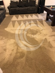 Littleton's Floor & Carpet Cleaning Waldorf 30