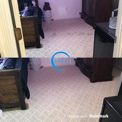 Littleton's Floor & Carpet Cleaning Waldorf 34