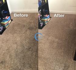 Littleton's Floor & Carpet Cleaning Waldorf 38
