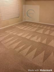 Littleton's Floor & Carpet Cleaning Waldorf 39