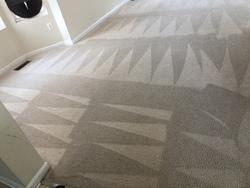 Littleton's Floor & Carpet Cleaning Waldorf 51