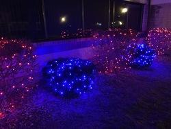St Nicks Holiday Lighting Fenton 8