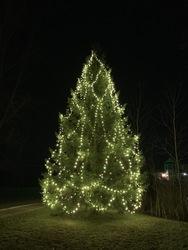 St Nicks Holiday Lighting Fenton 12