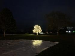 St Nicks Holiday Lighting Fenton 15