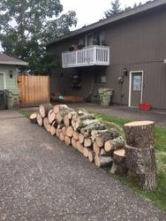 Duran Tree Service LLC Hillsboro 4