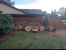 Duran Tree Service LLC Hillsboro 10