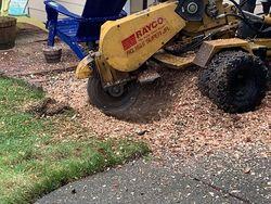 Duran Tree Service LLC Hillsboro 3