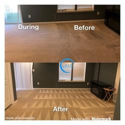 Littleton's Floor & Carpet Cleaning Waldorf 53