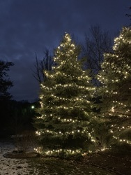 St Nicks Holiday Lighting Fenton 22
