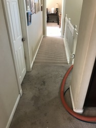 San Diego carpet cleaning San Marcos 10