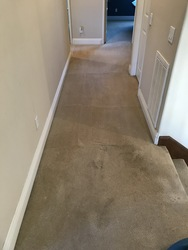 San Diego carpet cleaning San Marcos 11