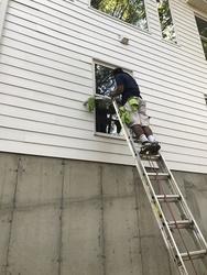 Dave's Carpet & Window Cleaning Saint Louis 18